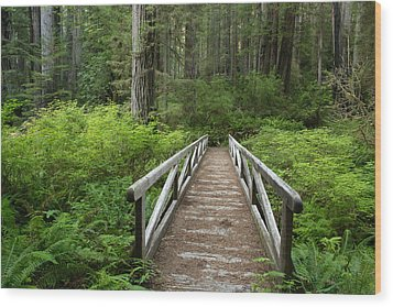 Footbridge Wood Print by Eric Foltz