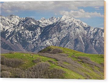 Foothills Above Salt Lake City Wood Print