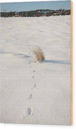Footprints In The Snow II Wood Print