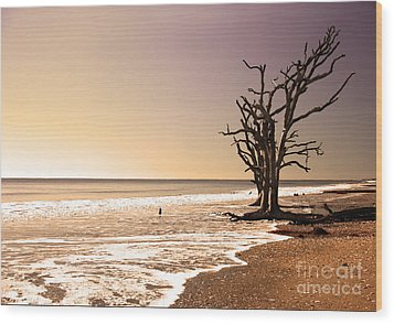 Wood Print featuring the photograph For Just One Day by Dana DiPasquale