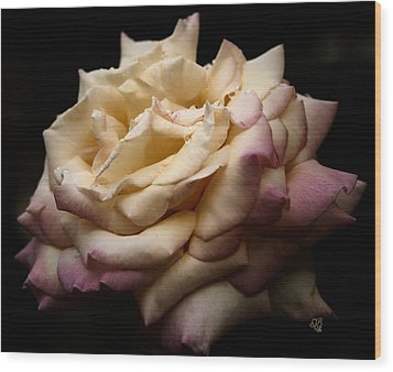 For Rose Lovers Wood Print by Barbara Middleton