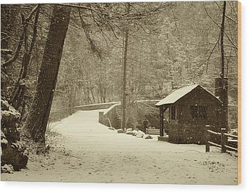 Forbidden Drive In Winter Wood Print by Bill Cannon