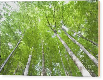 Wood Print featuring the photograph Forest 1 by Jean Bernard Roussilhe