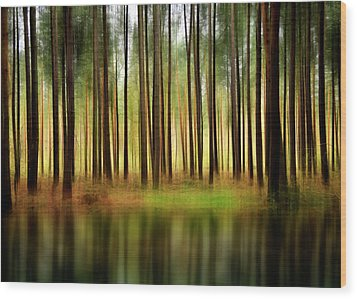 Forest Abstract Wood Print by Svetlana Sewell