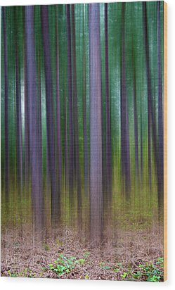Forest Abstract02 Wood Print by Svetlana Sewell