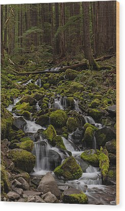 Forest Cathederal Wood Print by Mike Reid