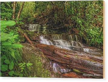 Wood Print featuring the photograph Forest Falls by Christopher Holmes