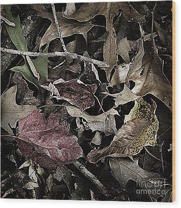Forest Floor - Leaf 10 Wood Print by Pete Hellmann