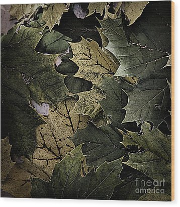 Forest Floor - Leaf 12 Wood Print by Pete Hellmann