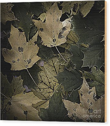 Forest Floor - Leaf 13 Wood Print by Pete Hellmann