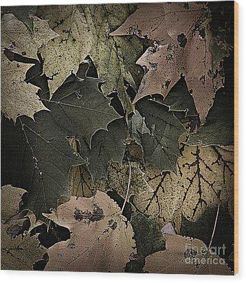 Forest Floor - Leaf 14 Wood Print by Pete Hellmann