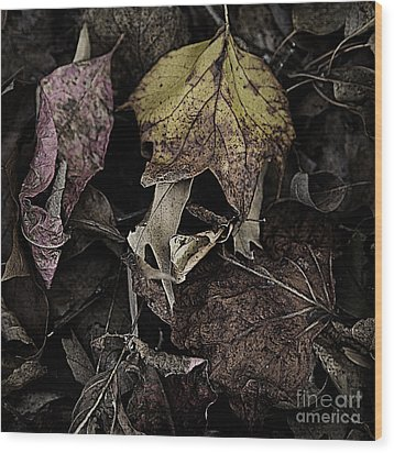 Forest Floor - Leaf 9 Wood Print by Pete Hellmann