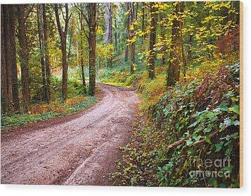 Forest Footpath Wood Print by Carlos Caetano