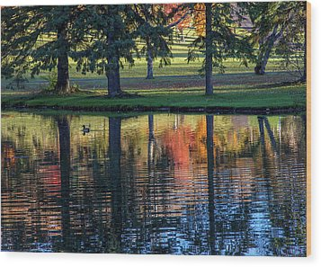 Forest Hill Reflections I Wood Print