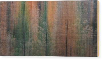 Forest Illusion- Autumn Born Wood Print