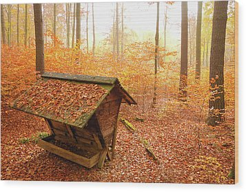 Forest In Autumn With Feed Rack Wood Print by Matthias Hauser