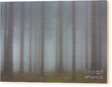 Forest In The Fog Wood Print by Michal Boubin