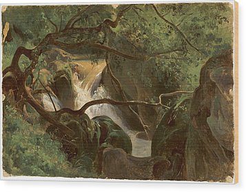 Forest Interior With A Waterfall Papigno Wood Print