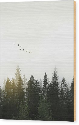 Wood Print featuring the photograph Forest by Nicklas Gustafsson