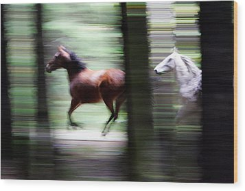 Forest Run Wood Print by Randall Ingalls