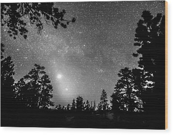 Forest Silhouettes Constellation Astronomy Gazing Wood Print by James BO  Insogna