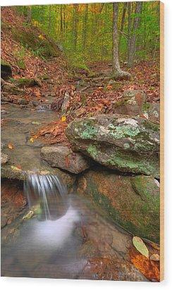 Forest Stream Wood Print by Ryan Heffron