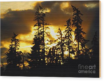 Wood Print featuring the photograph Forest Sunset  by Nick Gustafson