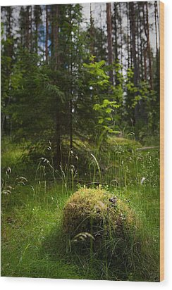 Forest Tales Wood Print by Konstantin Dikovsky