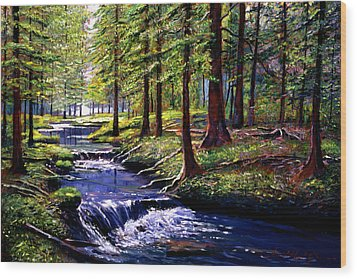 Forest Waters Wood Print by David Lloyd Glover