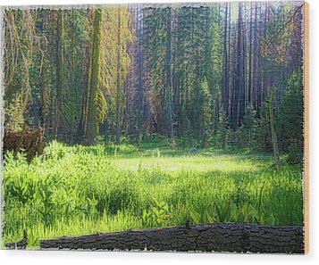 Foresta Wood Print by Michael Cleere
