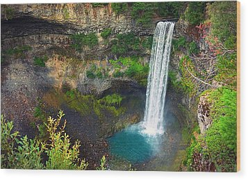 Brandywine Falls, Bc Wood Print by Heather Vopni