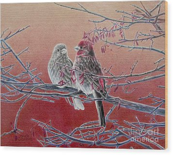 Forever Finch Wood Print by Pamela Clements