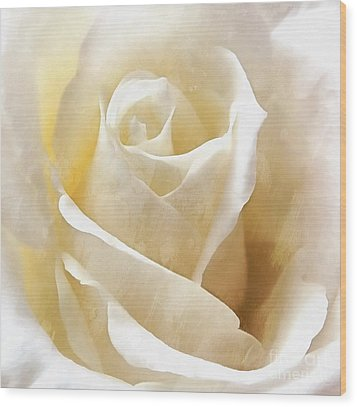 Wood Print featuring the photograph Forever More - Ivory Rose by Janine Riley