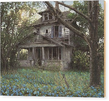 Forget-me-not Wood Print by Doug Kreuger
