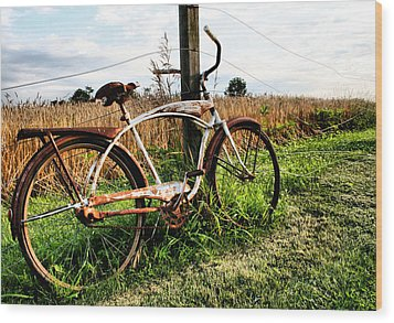 Forgotten Bicycle Wood Print by Doug Hockman Photography