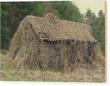 Forgotten Cabin Wood Print