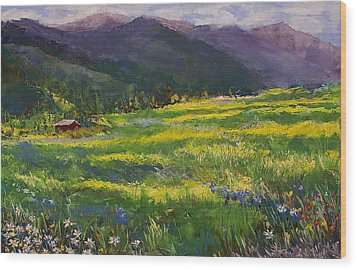 Forgotten Field Wood Print by David Patterson