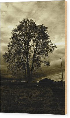 Forgotten Memory Wood Print