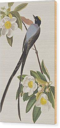 Fork-tailed Flycatcher  Wood Print by John James Audubon