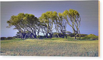Wood Print featuring the photograph Fort Fisher Trees by Phil Mancuso