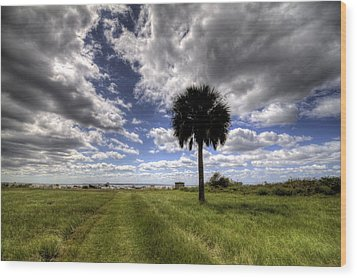 Fort Moultrie Palm  Wood Print by Dustin K Ryan