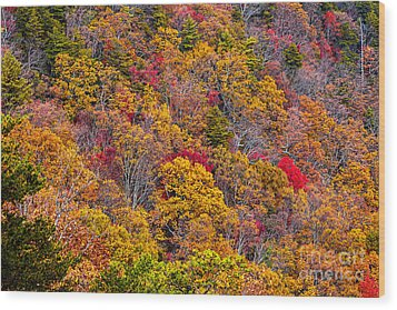 Fort Mountain State Park Cool Springs Overlook Wood Print by Bernd Laeschke