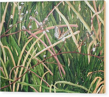 Fort Toulouse Butterfly Wood Print by Beth Parrish
