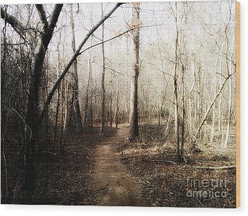 Wood Print featuring the photograph Fort Yargo Trail by Utopia Concepts