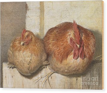 Forty Winks Wood Print by JG Marks