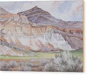 Fossil Beds  Wood Print