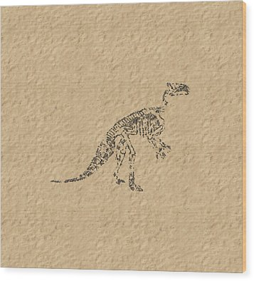 Fossils Of A Dinosaur Wood Print