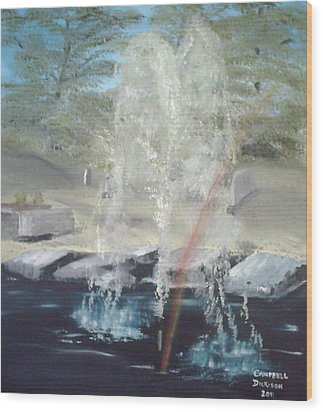 Fountain At Cataraqui Wood Print by Campbell Dickison