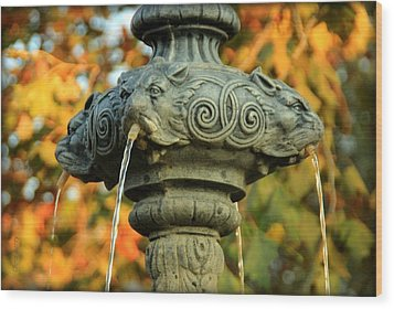 Wood Print featuring the photograph Fountain At Union Park by Chris Berry