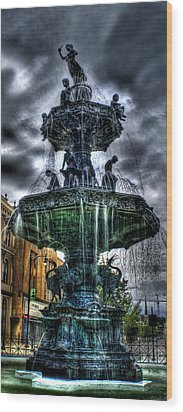Fountain Of Youth Wood Print by Christopher Lugenbeal